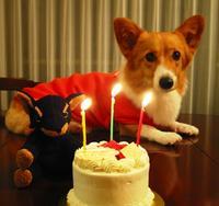 birthday_005.jpg