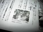 dogworld_002