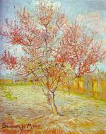 Peach_tree_in_bloom